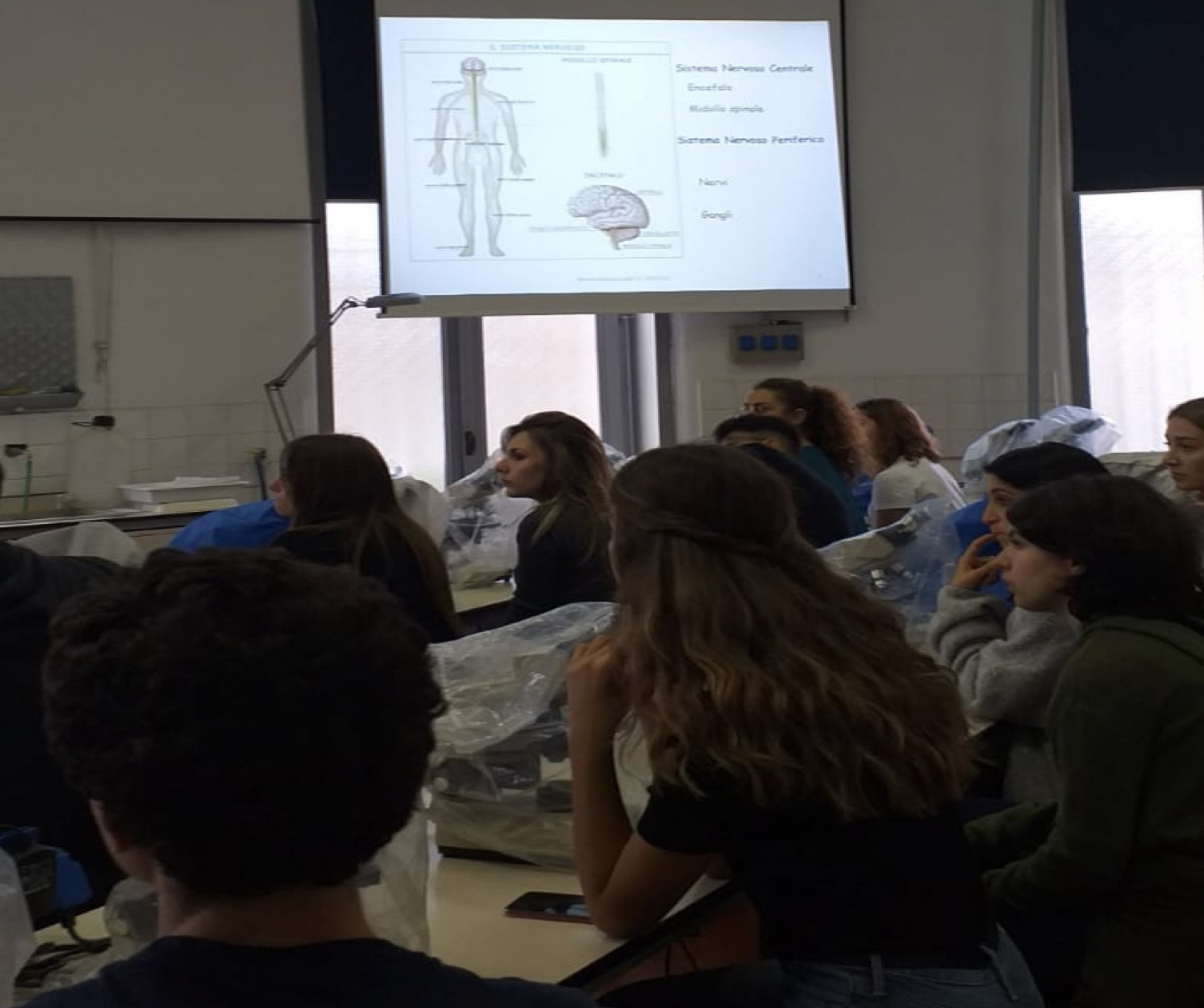 PCTO 2019/2020 - Laboratorio Neuroscienze